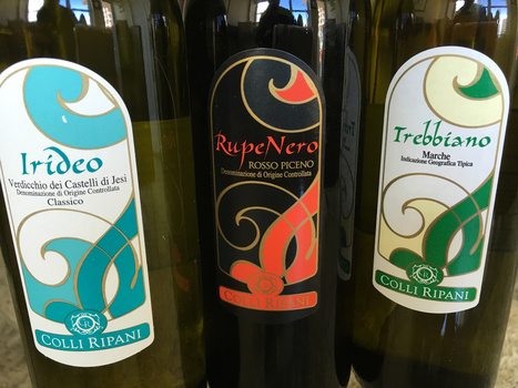A Stroll through Le Marche:  Italy's Undiscovered Wine Country | Wines and People | Scoop.it