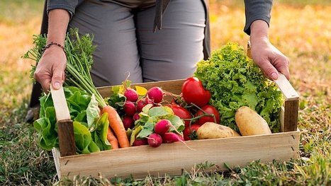 Les Français consomment de plus en plus de nourriture bio ! Voici les chiffres.   La presse et la classe de fle   Scoop.it