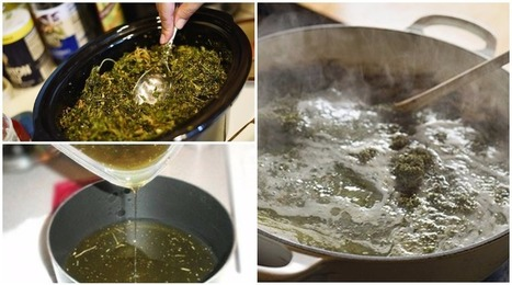 THIS Is The Homemade Cannabis Oil Recipe That People Are Using As A Chemo Alternative!   Simple Capacity + Guest Posts   Scoop.it