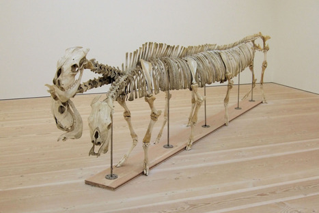 Shen Shaomin: dragon | Art Installations, Sculpture, Contemporary Art | Scoop.it