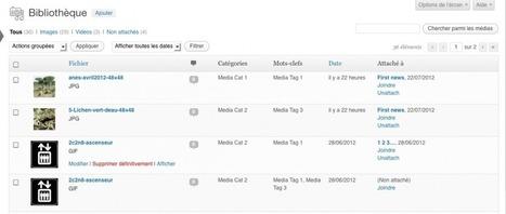 Utilitaire WordPress : ajouter l'interface de gestion aux taxonomies ... | CMS, portail web | Scoop.it