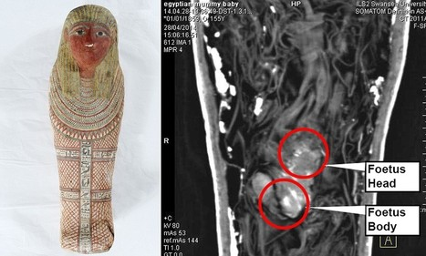 The mummified FOETUS: Scans reveal tiny ancient Egyptian sarcophagus ... - Daily Mail | Archaeology News | Scoop.it