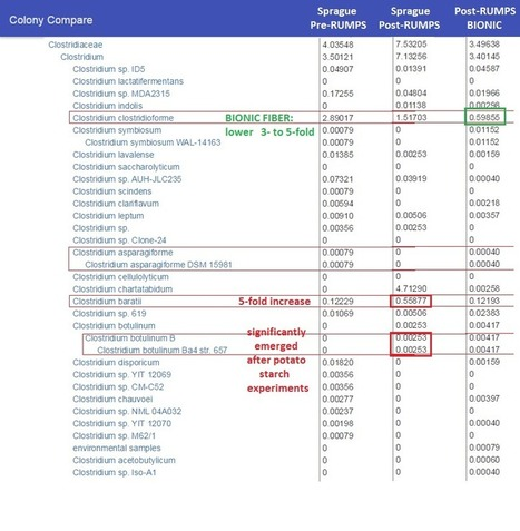 Animal Pharm   Bioinformatics and holobiota   Scoop.it