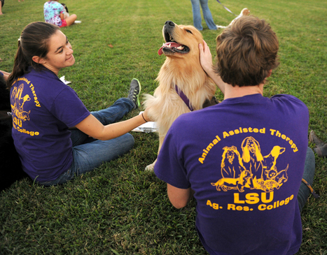 Lending A Paw: Animals try out for therapy program - LSU The Reveille | Wildlife | Scoop.it