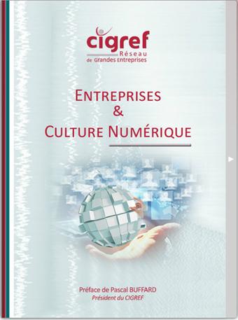 Vers l'entreprise de 2020… la culture numérique ! | Fondation Cigref | RSE | Scoop.it