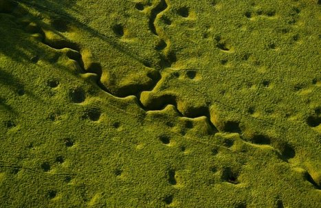 Sobering Images Show Famous World War I Battle Sites A Century Later   JWK World History   Scoop.it