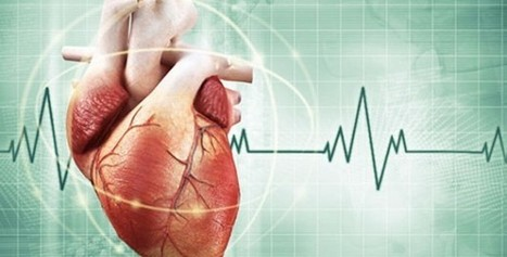25 Amazing Facts About Your Heart That Are Hard To Beat | Salud Publica | Scoop.it