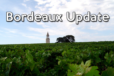 Bordeaux Update   All Things Wine and Food!   Scoop.it
