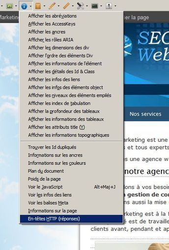 Faire un audit de site internet, un audit référencement - SEO WebMarketing | SEO | Scoop.it