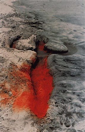 GOSEE: Ana Mendieta @ Hayward Gallery opening 24th September   Underrepresented and Self-Taught Artists Find Support on the Web   Scoop.it
