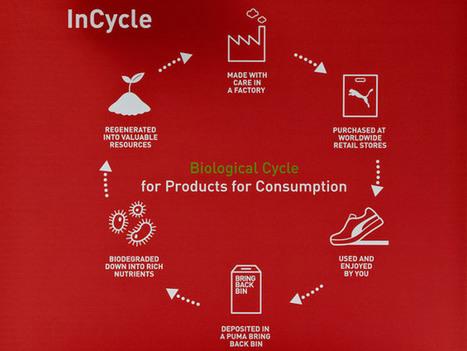 InCycle : Puma lance une collection Cradle to Cradle, biodégradable   Sport et Ecologie   Scoop.it