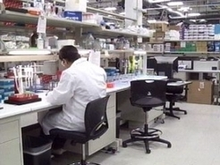 Sanford Research Gets Closer To Diabetes Cure | diabetes and more | Scoop.it