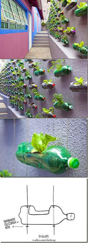 Plastic Bottle Hanging Planter Vase | Backyard Gardening | Scoop.it