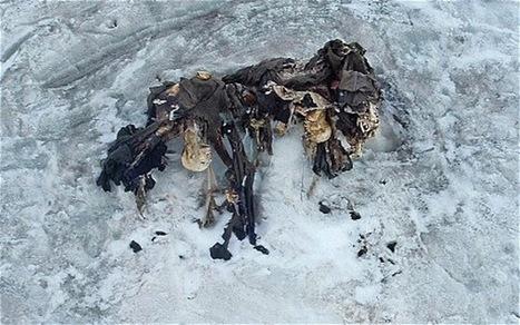 Le réchauffement climatique fait resurgir les cadavres de soldats de 14-18   La Longue-vue   Scoop.it