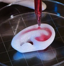 How 3D Printing The Human Body Works [Infographic] | Longevity science | Scoop.it