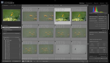 La gestion de ses photos | Photo numérique pour les nuls | Scoop.it