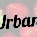 Urban Pocket : le renouveau des pocket tee   All about men's fashion : tout sur la mode masculine   Scoop.it
