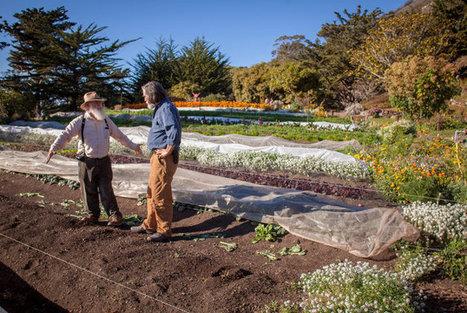 The Elders of Organic Farming | ESL  Teaching at school | Scoop.it