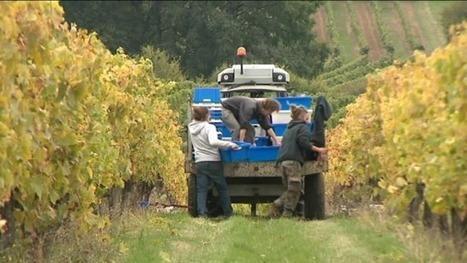 Les étudiants saisonniers, une approche différente de la vie - France 3 Aquitaine | Agriculture en Dordogne | Scoop.it