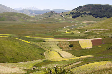 Best Lentils of the World and the splendor of Piano Grande in The Sibillini Mountains in Le Marche | Le Marche and Food | Scoop.it