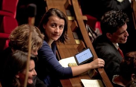 Déchéance de nationalité: Cécile Duflot maintient ses propos sur Vichy et accuse Manuel Valls de les «falsifier» - 20 Minutes | Actualités écologie | Scoop.it