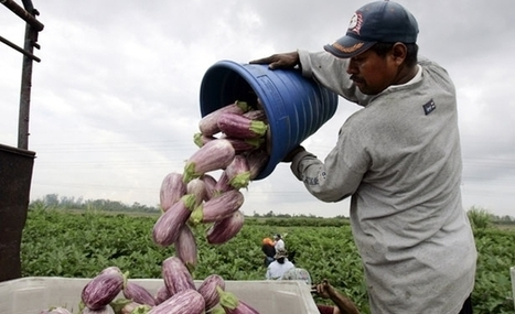 Can the Foodie Trend Also Help Food Workers? | Community Food Systems | Scoop.it