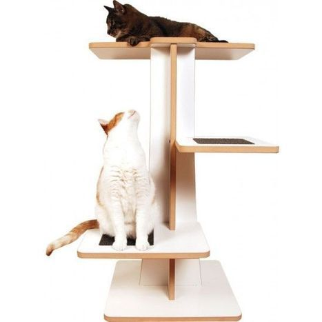 Square Cat Habitat Acacia Cat Tree – White Laminate and Plush Pewter – Modern Cat Products – Pets – Accessories   Dog Products   Scoop.it