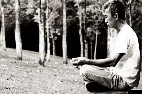 Neurobiological changes explain how mindfulness meditation improves health | Research on Mindfulness Meditation | Scoop.it