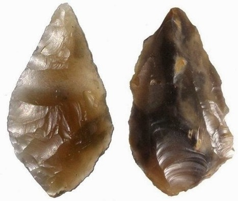The Archaeology News Network: 8,000-year-old stone tools unearthed... by rabbits | Aux origines | Scoop.it