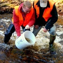 Protect wild Atlantic salmon runs | All about water, the oceans, environmental issues | Scoop.it