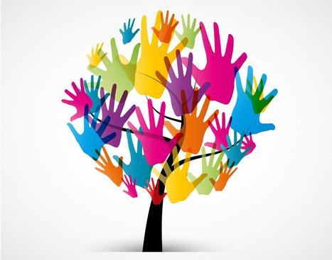 RIAL Flash Informativo #38 - Creación del Departamento de Inclusión Social   Inclusion Financiera en Latinoamerica   Scoop.it