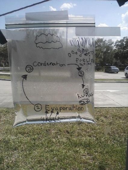 Le cycle de l'eau - Capuchon à l'école | Math and science | Scoop.it