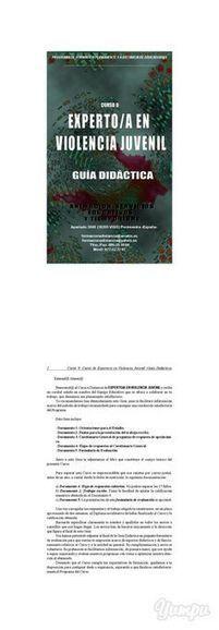 Curso Experto Violencia Juvenil - Cursos Capacitacion para Latinoamerica educacion, animacion sociocultural | Cursos Latinoamerica educacion | Scoop.it