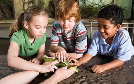 Greening STEM Educator Toolkits | National Environmental Education Week | HCS Learning Commons Newsletter | Scoop.it