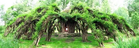 "Sanfte Structuren: ""Mother of all willow palaces"" 
