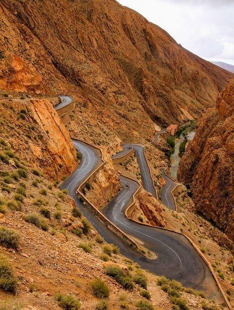 Viajes Por Marruecos , Rutas por Marruecos , Excursiones al Desierto , Noche con camellos   Viajes   Scoop.it