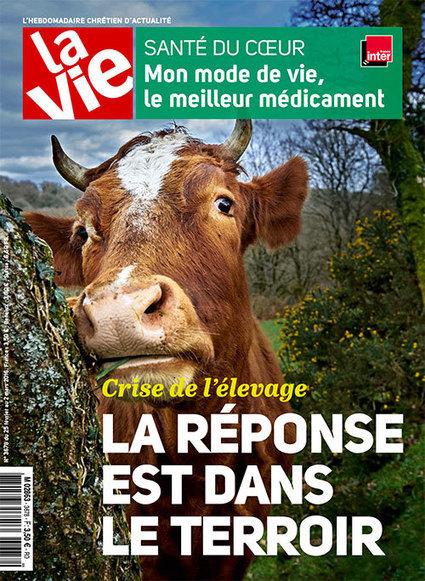 Dans l'Aude, une cantine pour améliorer l'ordinaire - Carnets Citoyens - La Vie | La Bio en restauration Collective | Scoop.it