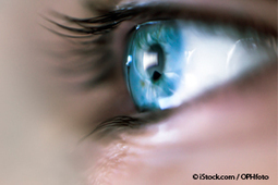 Foods to Significantly Improve Your Vision | Organic Farming | Scoop.it
