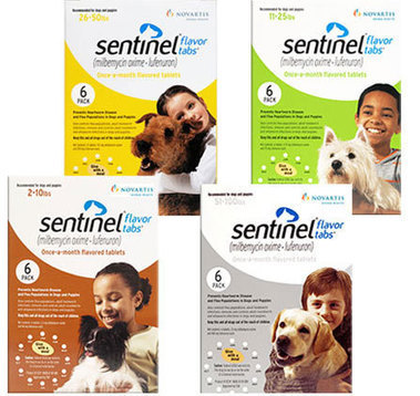 1800petmeds coupon code 10% off protect your pet | Enjoy your shopping with discounts | Scoop.it