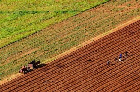 Quand les multinationales de l'agrobusiness s'achètent une vertu climatique   Questions de développement ...   Scoop.it