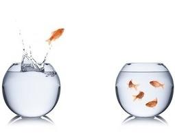 Il cambiamento in azienda: change management nelle risorse umane | Catchstaff - La tua idea. Il tuo team | Scoop.it