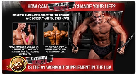 Which is BETTER- Testosterone Max and Optimum Muscle?? FIND OUT THE TRUTH!! | Boost The Speed Of Muscle Building! | Scoop.it