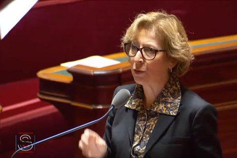 Crédit d'impôt recherche : Geneviève Fioraso répond à Michel Berson, sénateur de l'Essonne   Enseignement Supérieur et Recherche en France   Scoop.it
