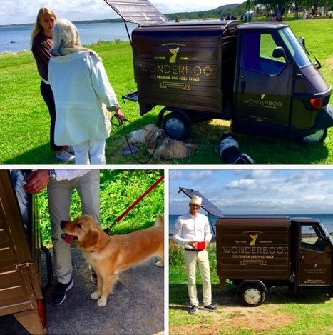 Un foodtruck...pour chiens | streetmarketing | Scoop.it