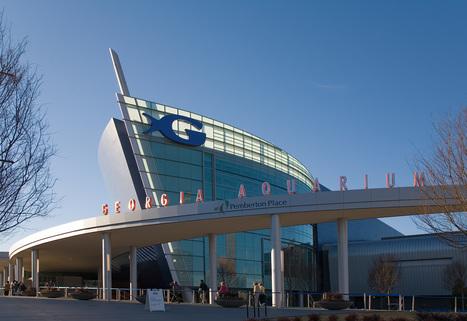 Business Class Flights to Hartsfield Intl Apt(ATL) | Tour and Travel | Scoop.it