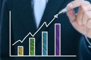 Le marché du logiciel BtoB en croissance de 5,5% | BtoB Webmarketing | Scoop.it