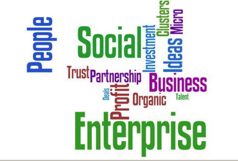 Social Entrepreneurship | Importance & Implications | Wellington Entrepreneurship | Scoop.it