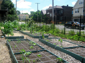 cleveland and other cities should develop agricultural land use plans, speaker says | Vertical Farm - Food Factory | Scoop.it
