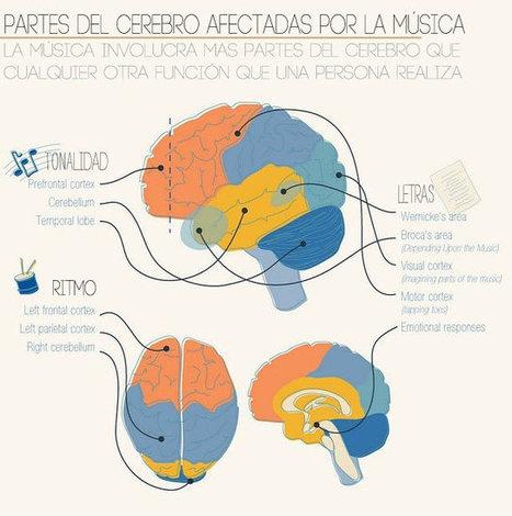 Efectos de la música en el Cerebro de los niños | Recull diari | Scoop.it