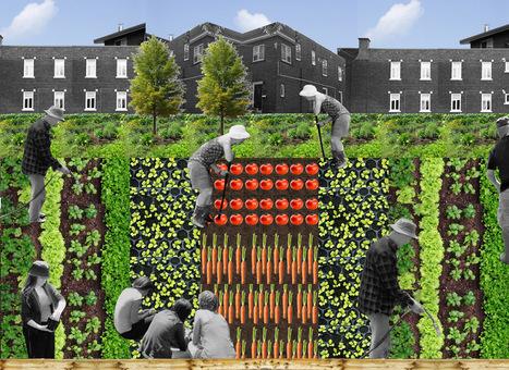 Les services rendus à la ville par l'agriculture urbaine, Dernière Disputes de l'Agroparitech | agriculture urbaine | Scoop.it